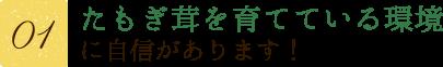 【その1】花咲タモギ茸を育てている環境に自身があります!
